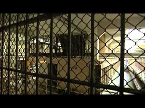 The Escape of Alcatraz by Pablo Favila