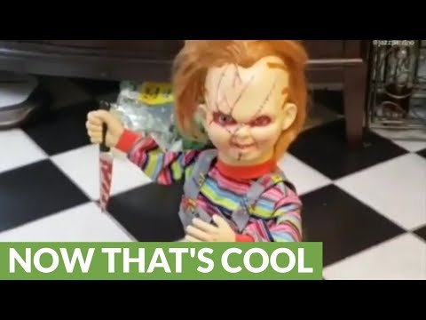 Horrifying Chucky doll rides around on robot vacuum