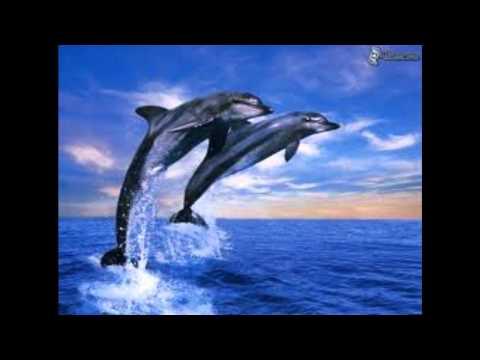 Dj Iridium-Hanging On(Dj Pambad Remix) New Trance Song 2011