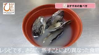 【大分県中津市/中津干潟/牡蠣/PV】日本初!干潟で作られた牡蠣「ひがた美人」