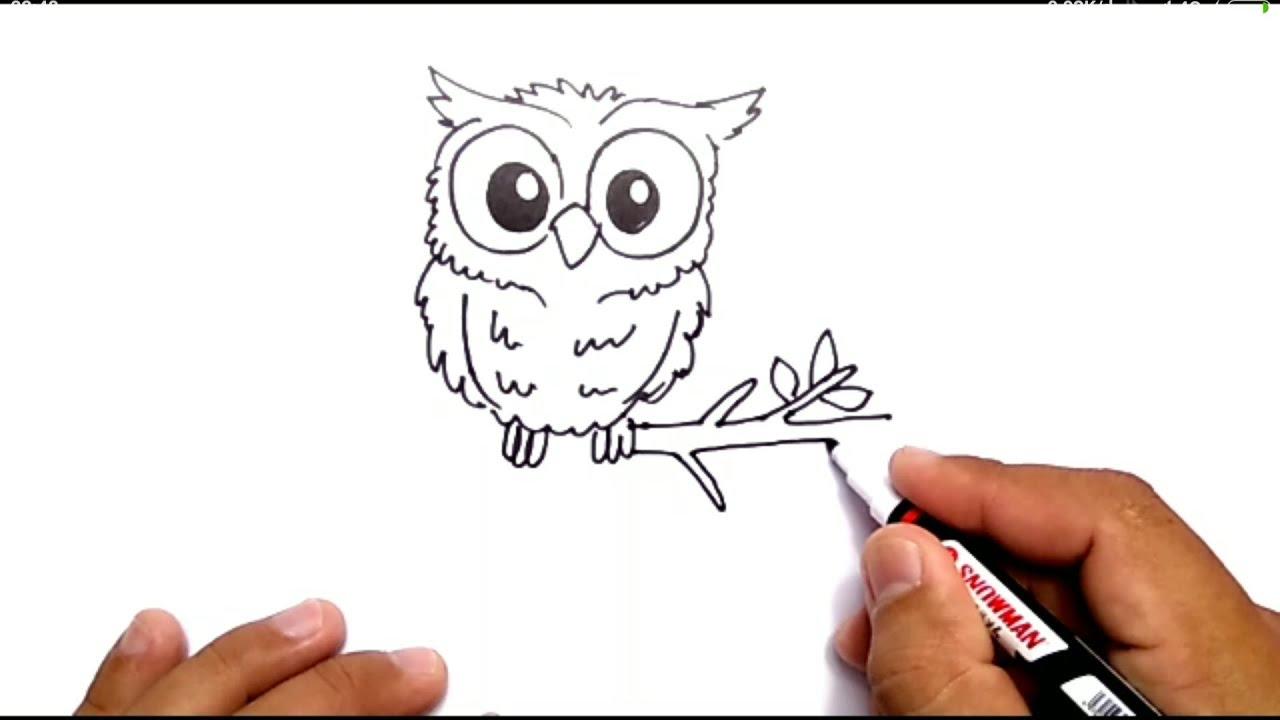 Cara Menggambar Burung Hantu How To Draw Owl Youtube
