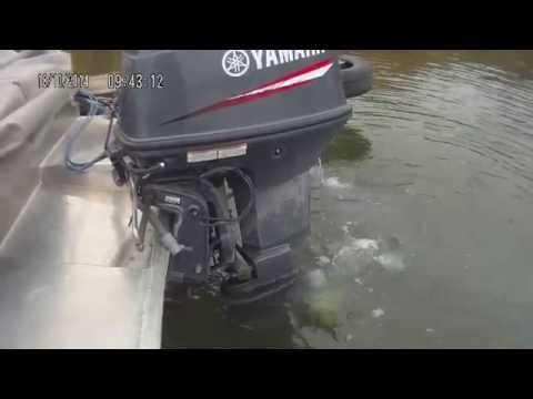 Yamaha 60 холодный старт 2014
