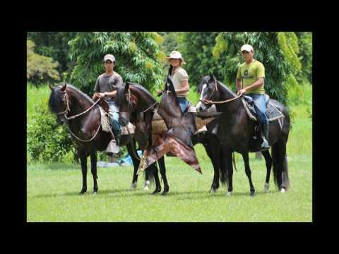 Real Estate For Sale in Honduras - Miami FL Realtor 786-368-4919