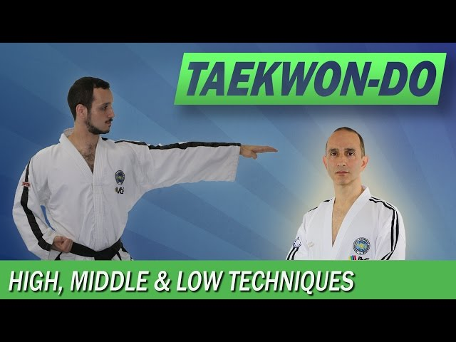 Taekwon-Do: High, Middle & Low Techniques