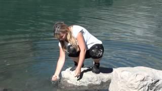 домбай отдых летом видео