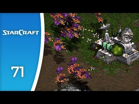 Gaggles of flying shrimps - Let's Play StarCraft: Brood War: Zerg Campaign #71