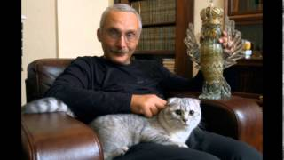 Любимые кошки знаменитостей. Британцы и Шотландцы.