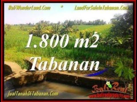 Affordable PROPERTY LAND IN Tabanan Selemadeg BALI FOR SALE TJTB338