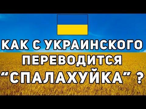 """Как переводится с Украинского """"СПАЛАХУЙКА""""  ??? [CSS Контра]"""