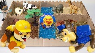 Щенячий патруль новые серии. Ромео спрятал шоколадное яйцо в зоопарке. Игрушки Paw patrol