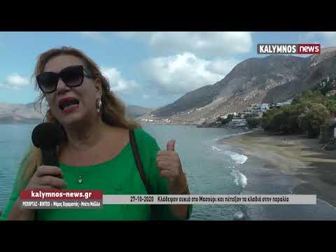 27-10-2020 Κλάδεψαν συκιά στο Μασούρι και πέταξαν τα κλαδιά στην παραλία