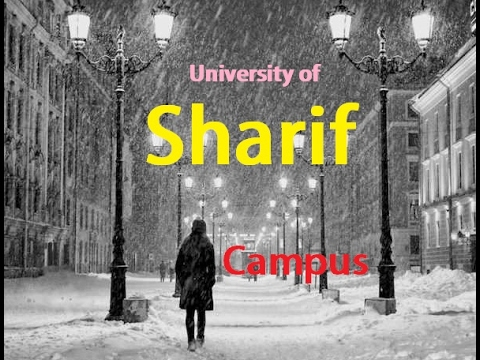 Sharif university - campus at winter