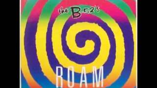 B52s - Roam Extended Mix)