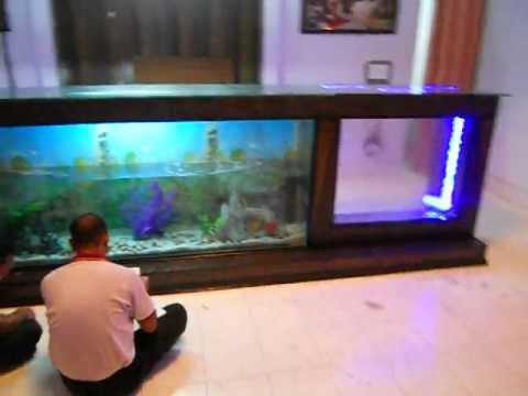 bar counter aquarium youtube. Black Bedroom Furniture Sets. Home Design Ideas