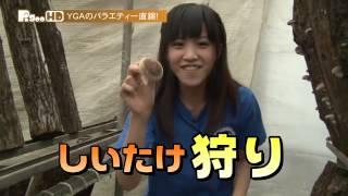 YGA - 狩り女 夏子