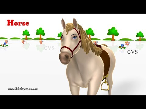 Thumbnail: Learn Animals Song - 3D Animation Animals Video for Kids