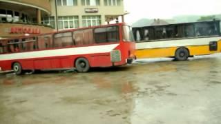 Autobuze Campeni 2012