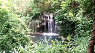 Watch Nature videos and Relax   Infinite Possibilities World TV