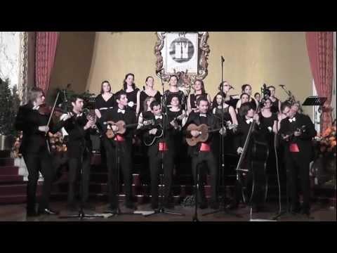 Blue Danube Orkestar & Družice - Rhapsody in Danube Blue