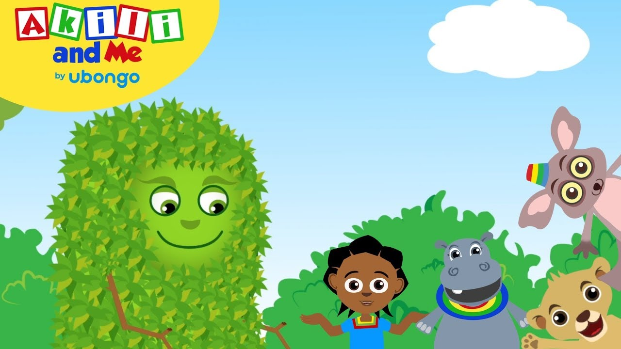 STORYTIME: Akili and the Angry Shrub! | Akili and Me FULL STORY | Cartoons for Preschoolers