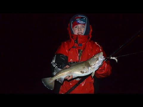 Sea Fishing - MOD - Bristol Channel