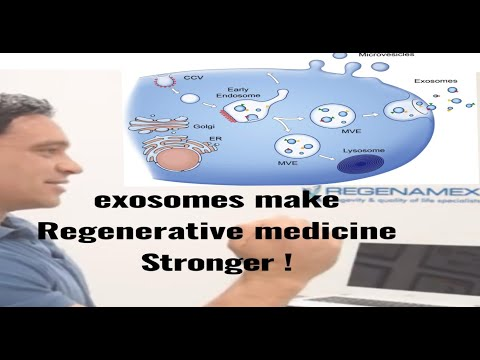 how-do-exosomes-work?-will-my-stem-cells-work-better-with-exosomes?-puerto-vallarta-mexico-2019