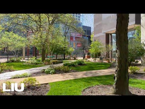 Experience LIU Brooklyn Campus - Virtual Walk Through