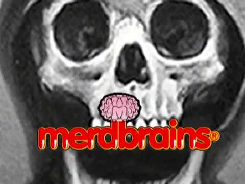 MERDBRAINS 2013