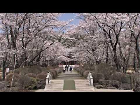 en  Chino City Tourist Information - Nagano Japan