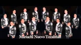 sonora y sus ojos negros mariachi nuevo tecalitlan