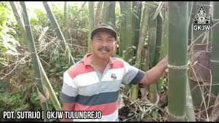 Sabda Pangon 17 September 2020 | PDT. SUTRIJO | GKJW TULUNGREJO | URIP KAYA DENE WIT PRING
