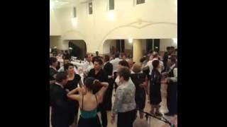 ramona vasiu si formatia nunta talmacel 2014
