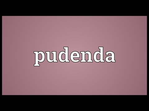 Pudenda Meaning
