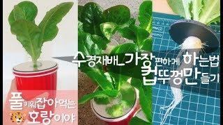 [수경재배_가장쉽게하는법] 우드락으로 뚜껑 만들기 ft.코스트코빨간컵 [베란다텃밭] 상추키우기