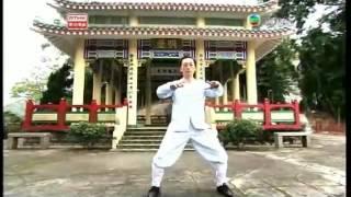 《功夫傳奇》之「武當之巔」(節錄片段──袁康就博士指導李嘉功夫)2010