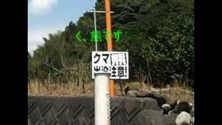 山原(やんばら)