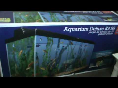 55 gallon aquarium -