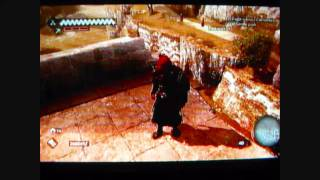 assassin's Creed: Brotherhood West Antico Hard to Find Flag and Treasure