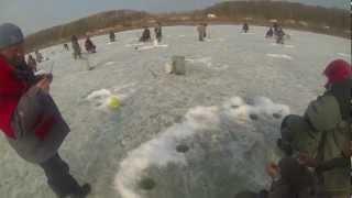 Зимова риболовля Владивосток 02.04.2013. Російський Д Р.