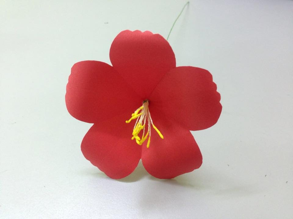 How To Make Hibiscus Paper Flower Easy Origami Flowers For