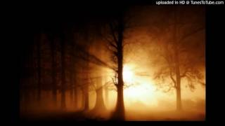 Zara Chehra - Instrumental