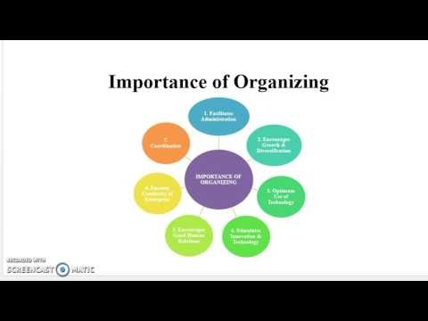 Principles of Management 6 Organizing in Management
