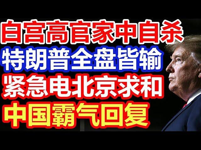 白宫高官家中自杀 特朗普全盘皆输 紧急向北京求和 中国霸气回复