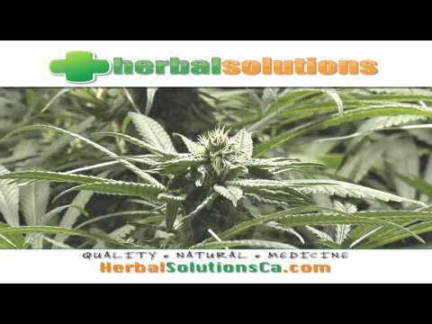 Natural Herbal Solutions long beach