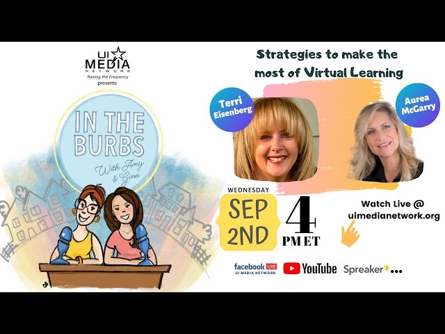 Strategies to make the most of Virtual Learning