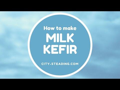 How to make Milk Kefir:  Get rid of Acid Reflux