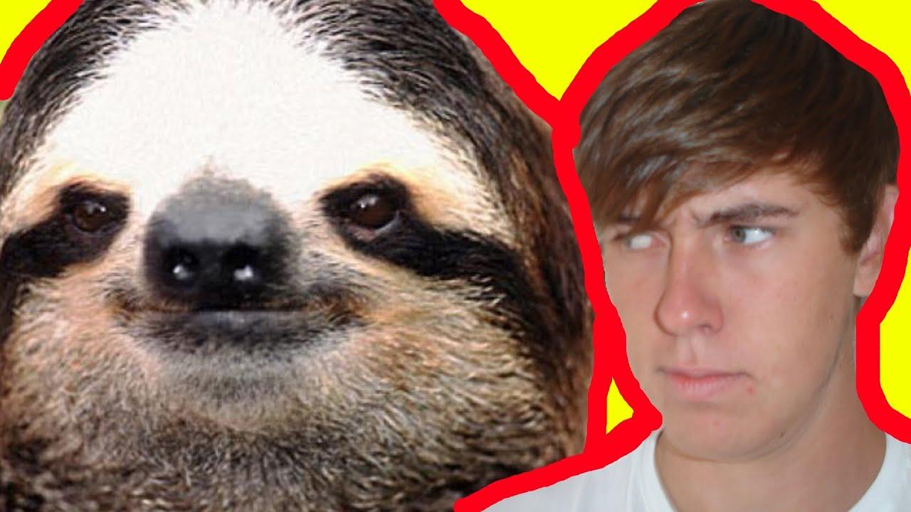 Rape sloth memes - photo#53