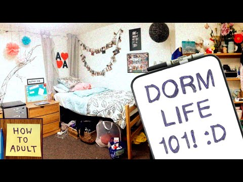 Dorm Life Essentials: What to Pack for College Dorms!