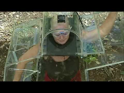I'm A Celebrity Get Me Out Of Here 2009 Final E19 P2
