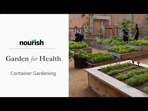 Thumbnail to launch Container Gardens video